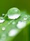 01603 droplets 1920x1080