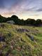 02221 stonefields 1920x1080