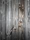 02266 itswood 1920x1080