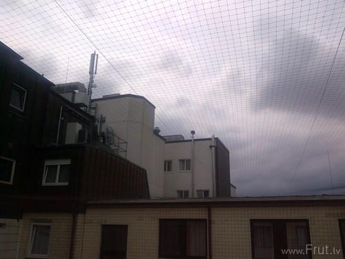 Hamburg-20120620-00208
