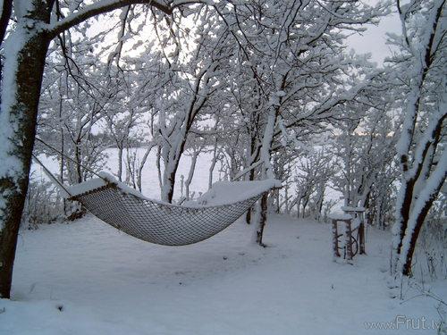 Pervij sneg 2008 002